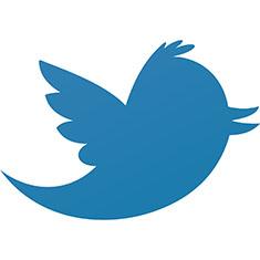 Twitter Yasağını Kaldırma